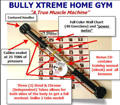bully xtreme bullworker
